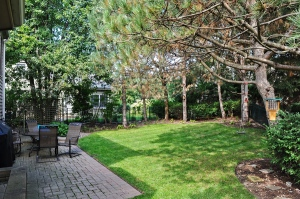 1131 St William Backyard