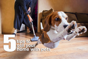 5-tips-to-sell-your-home-with-pets-185725614